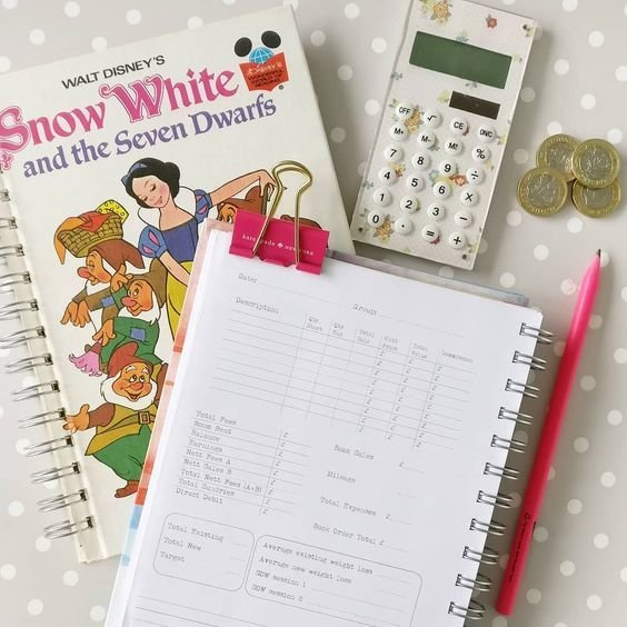 Slimming World Consultant Accounts Book