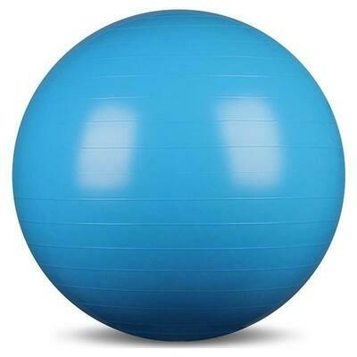 Pro's Pro. Гимнастический шар Gym Ball