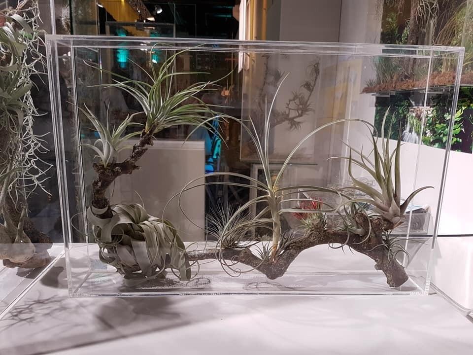 Natuurfragmenten in een micro-ecosysteem paneel