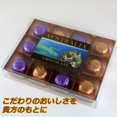 オーストラリアンスタイルチョコレート 12箱セット(1箱12粒入り)