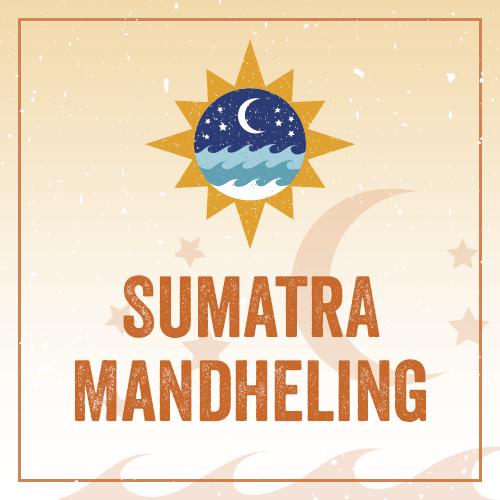 Sumatra Mandheling REG31