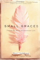 Small Graces: The Quiet Gifts of Everyday Life