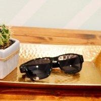 Covert Surveillance Sunglasses