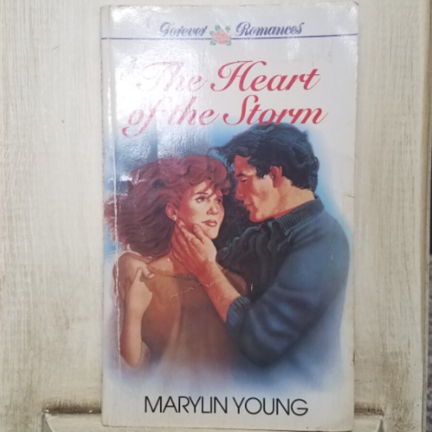 The Heart of the Storm by Marylin Young