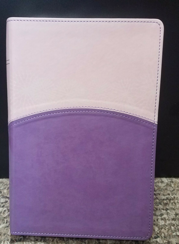 Holman Christian Standard Study Bible for Women