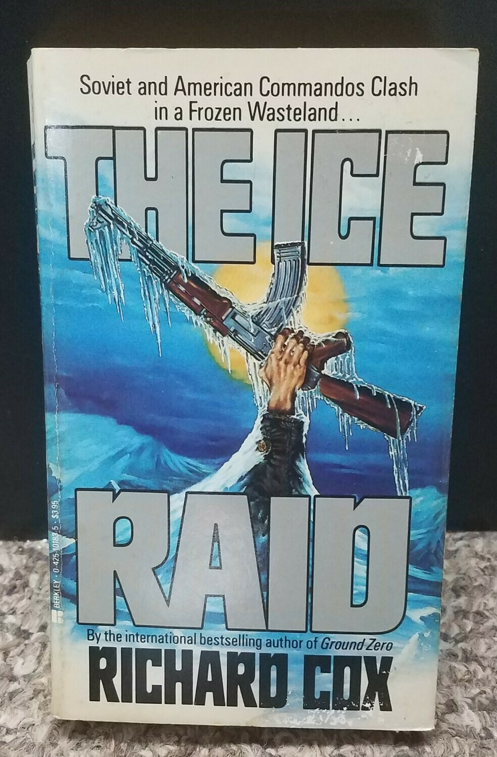 The Ice Raid by Richard Cox