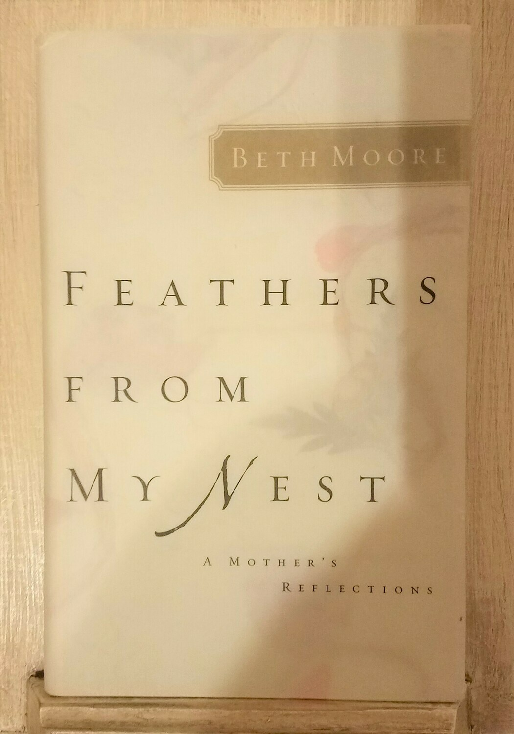 Feathers from my Nest by Beth Moore