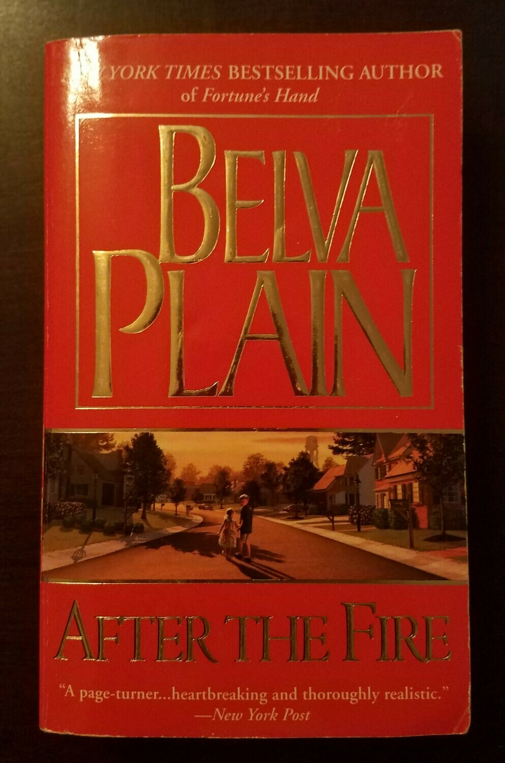 After the Fire by Belva Plain