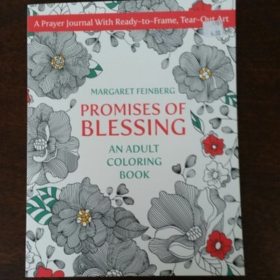 Promises Of Blessing Coloring Book