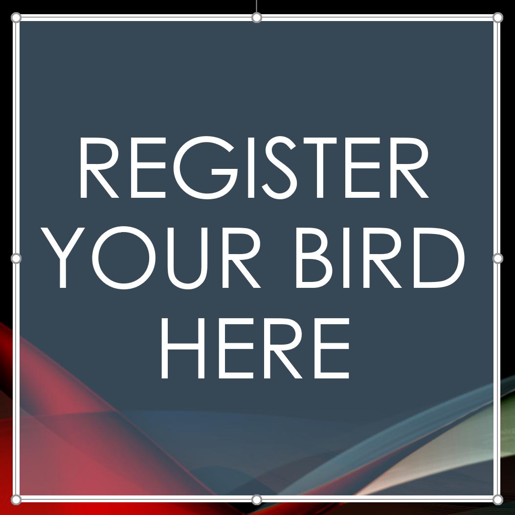 Exotic Bird Registry REGbird