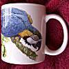 Blue and Gold Macaw  - Ceramic Mug 00006