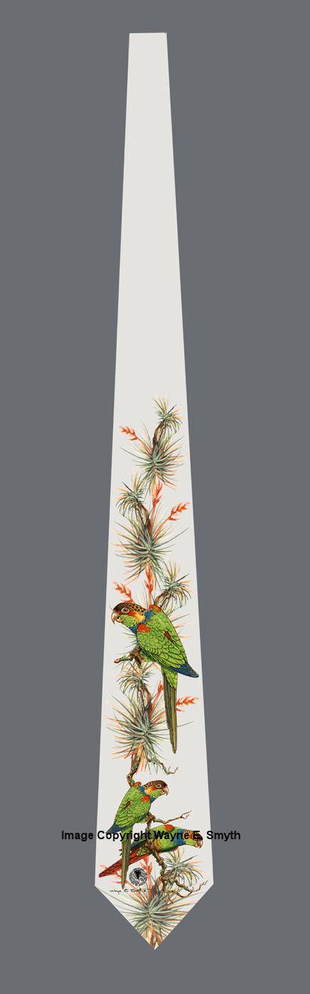 Blue Throated Conures - Neckties 00022