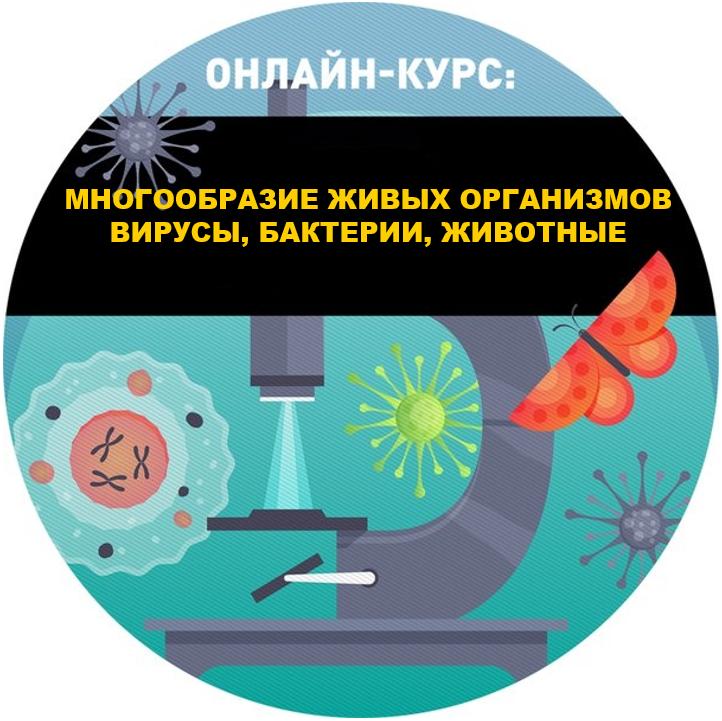 Многообразие живых организмов. Вирусы, бактерии, животные.