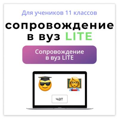 Индвидуальное сопровождение Lite