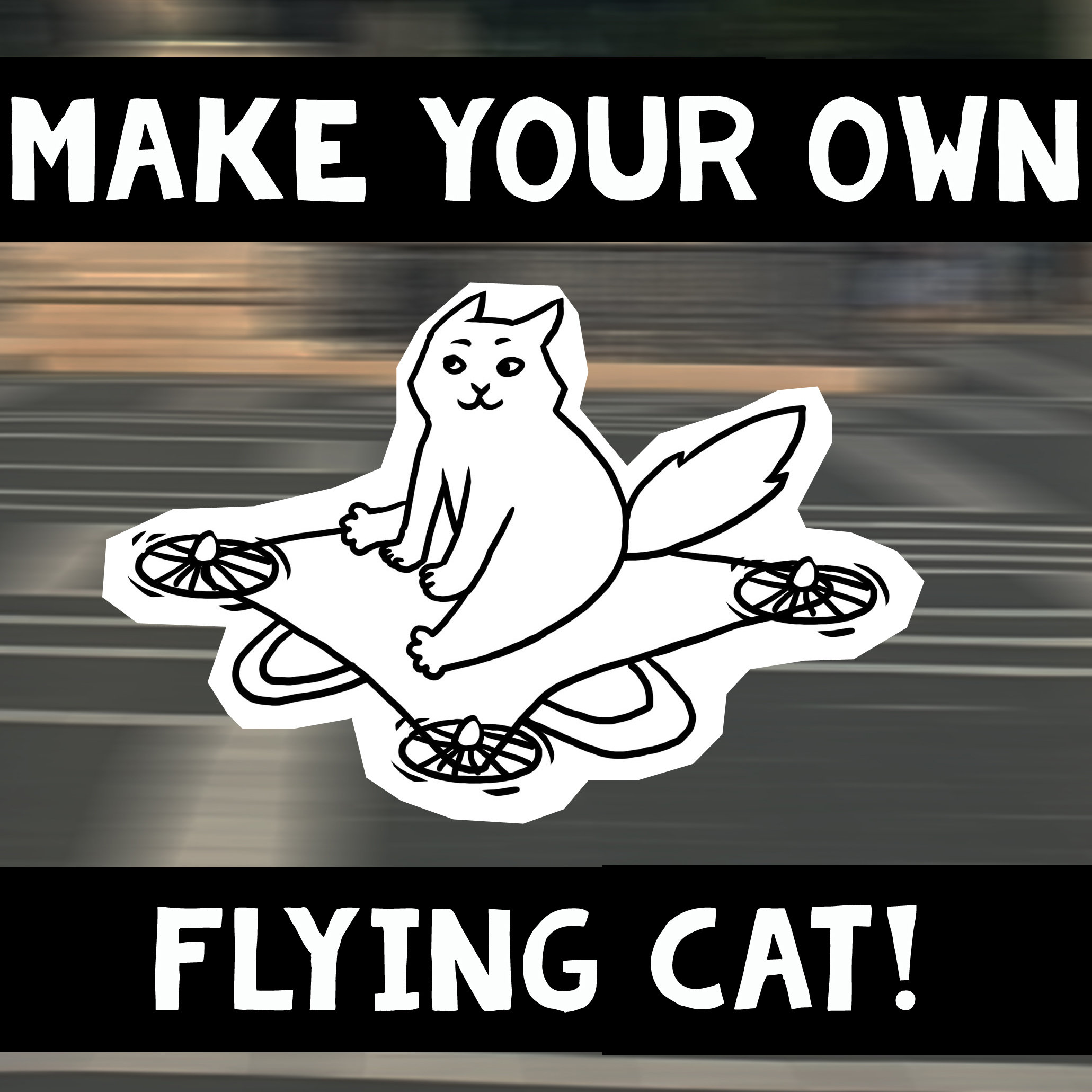 Make your own flying cat 00795