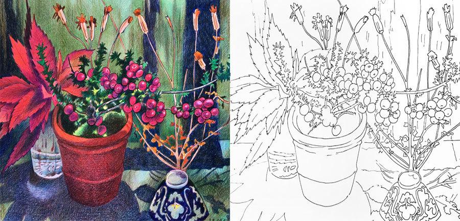 Drawing Like Svetlana Frank Coloring Book Vol. 5
