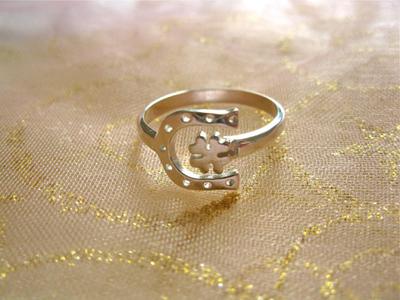 Horseshoe + clover ring ~ adjustable, silver