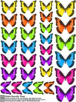Bright Butterfly Wings