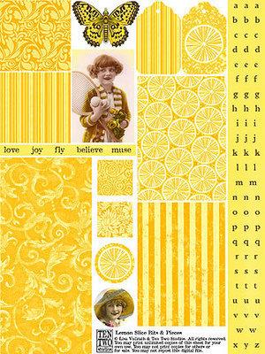 Lemon Slice Bits