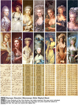 Baroque Beauties Microscope Slides