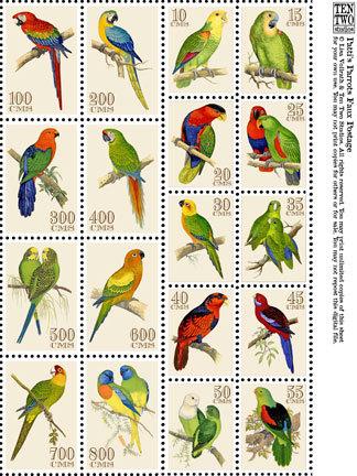 Patti's Parrots