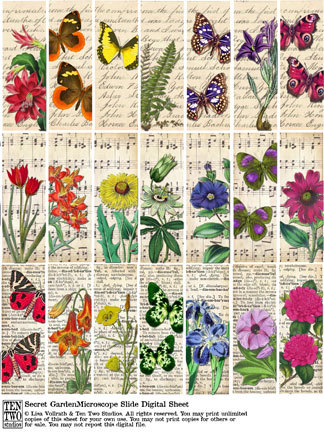 Secret Garden Microscope Slides