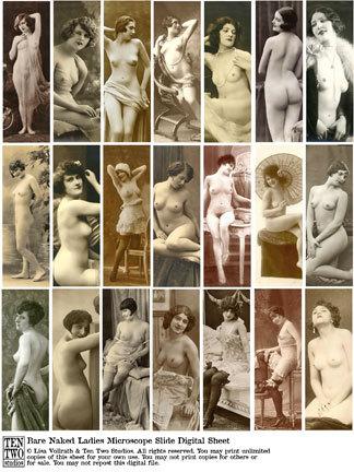 Bare Naked Ladies Microscope Slides