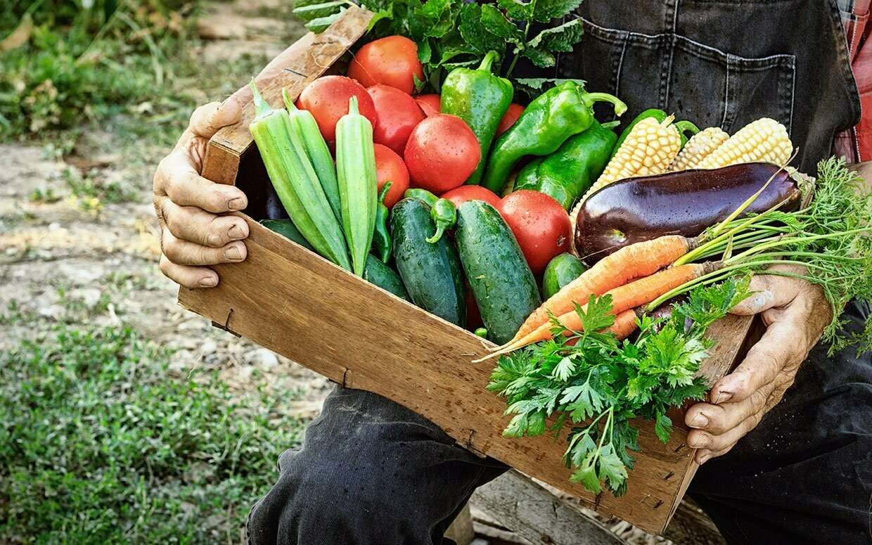 CSA Produce Box – Large Weekly Subscription (Wednesday June 10, 3-5PM Pickup)