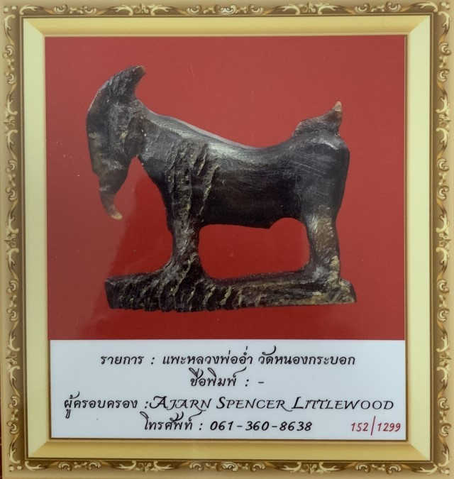 Pae Maha Lap Khao Kwai Gae Luang Por Am 2470 BE Carved Horn Lucky Goat 3rd Prize Competition Winner Certificate Free EMS
