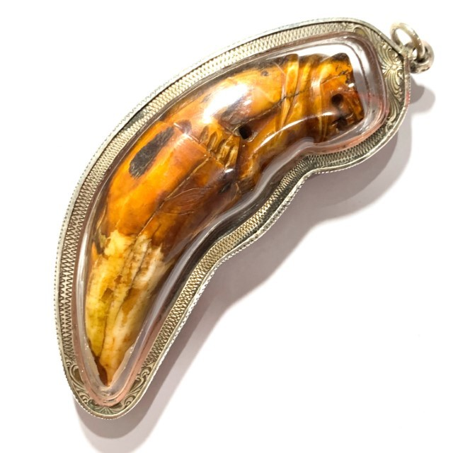Khiaw Suea Kroeng Gae Tiger Tooth Amulet 4 Inches Hand Spell Inscriptions Silver Custom Casing Luang Por Parn Wat Bang Hia Free EMS