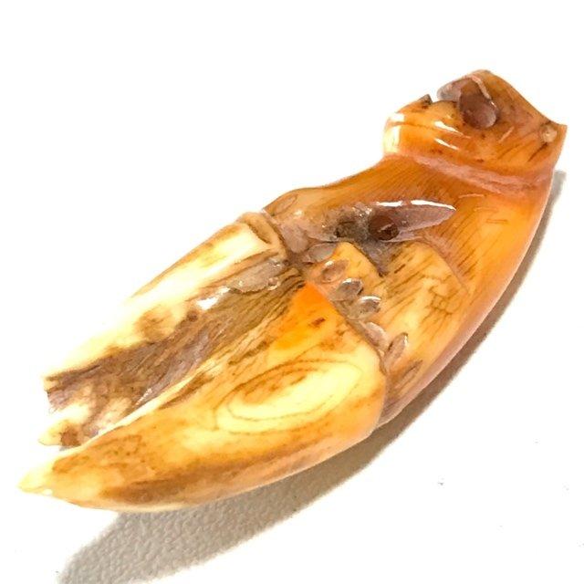 Khiaw Gae Suea Carved Tooth Tiger Amulet 4 Cm Luang Por Parn Wat Bang Hia (2368 - 2453 BE) - Kong Grapan Chadtri Maha Amnaj Talismanic Amulet of Master Class Status
