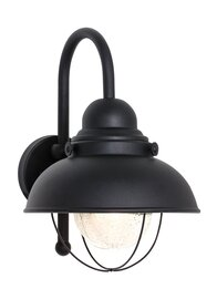 Black One Light Wall Mount