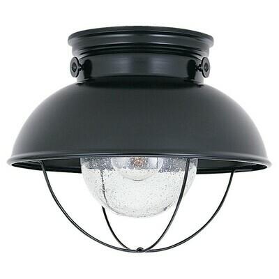 Black One Light Ceiling Mount