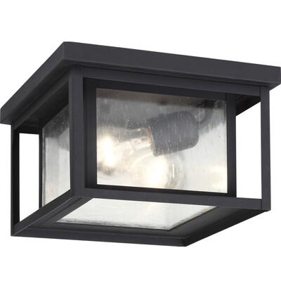 Black Two Light Ceiling Mount