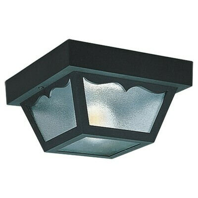 Clear One Light Ceiling Mount