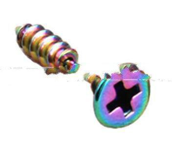 Rainbow Plated Mini Stud Earrings Screws