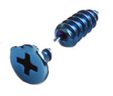 Mini Blue Stud Earrings Screws