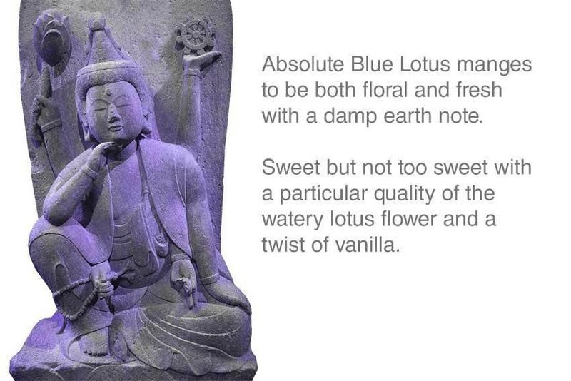Absolute Blue Lotus Incense 12 Sticks