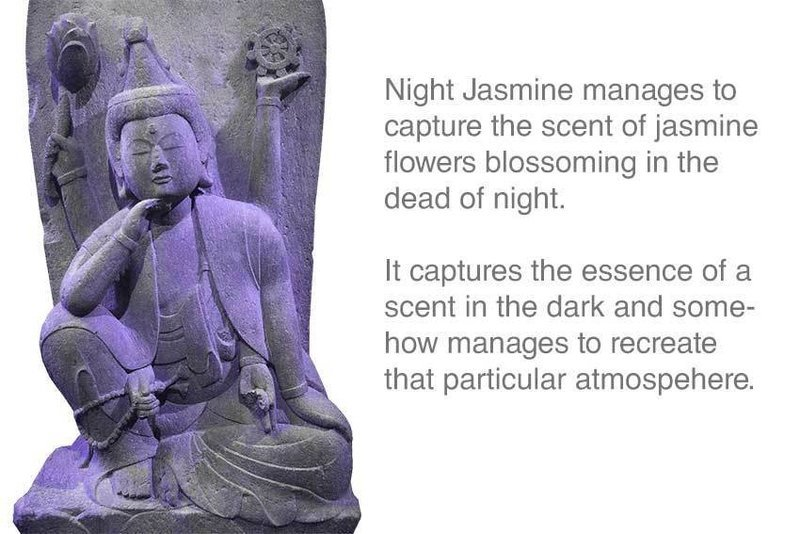 Night Jasmine Incense 12 Sticks