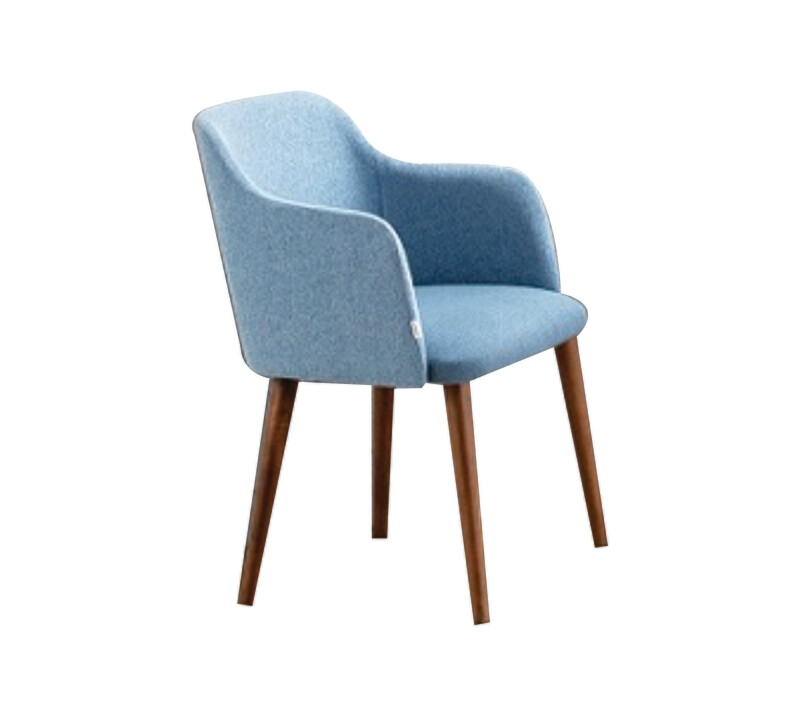 Dining Chair (Light Blue)