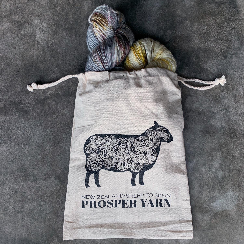 Prosper Project Bag