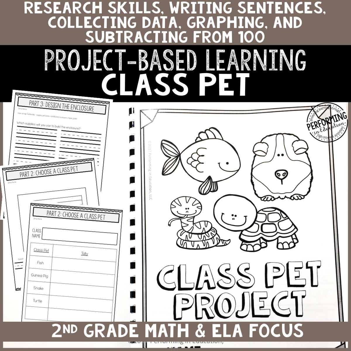 2nd Grade Project-Based Learning: Class Pet Project 00060