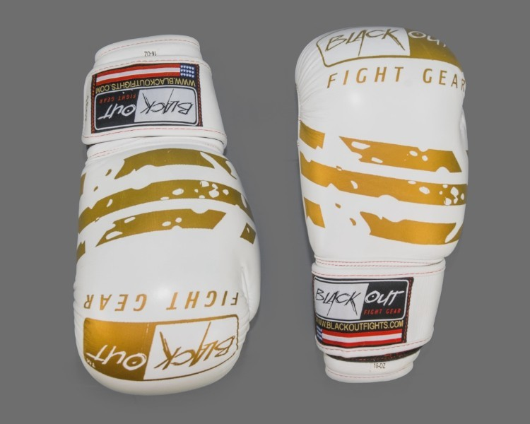 SPARRING and BAG GLOVES BO509