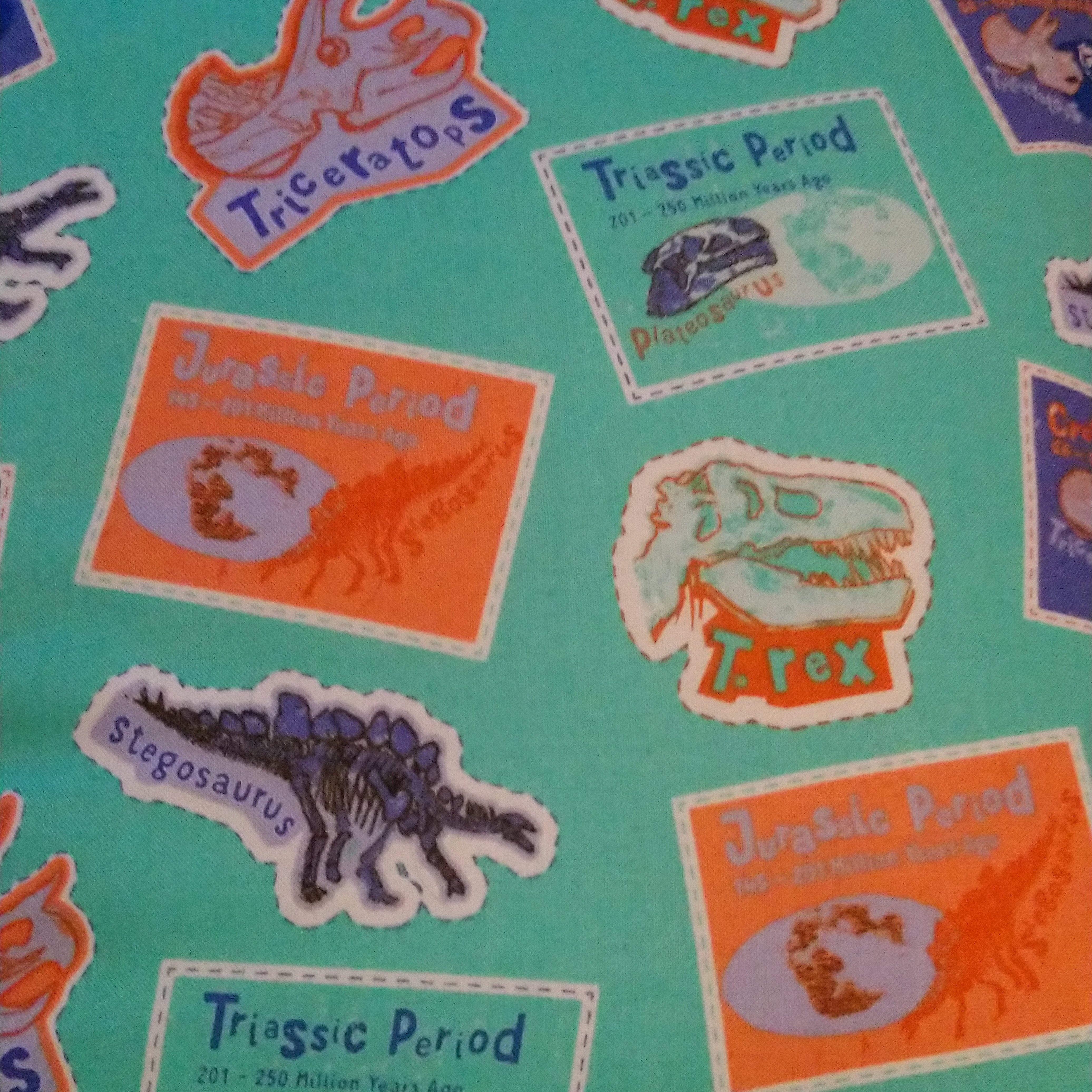 Prehistoric Dinosaur Lined Drawstring Bag