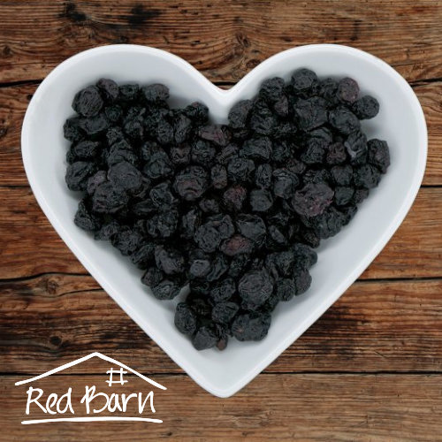 Dried Blueberries- 100g 00272