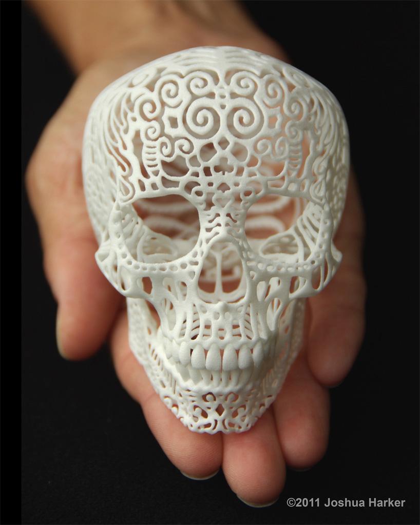 Crania Anatomica Filigre 3d printed skull: small