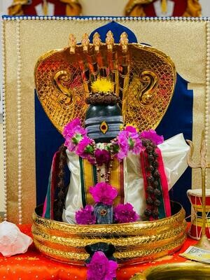 Abhishekam for Lord Shiva (@ Temple by Request)