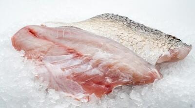 Frozen Barramundi Fillet with Skin