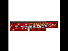 2084 - Screaming Wild Cat 300 Shot Barrage