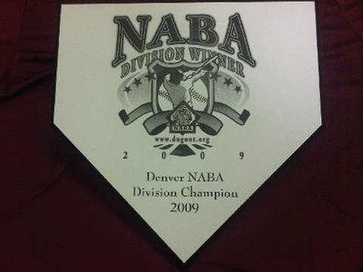 Team Division Award